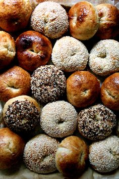 Bagels made easy(ish)! Armed with a few basic ingredients and helpful instructions, you can make fresh, chewy bagels at home. Best Bagels, Peasant Bread, Biscuits, Sandwiches, Homemade Bagels, Summer Tomato, Bagel Recipe, Everything Bagel, Instant Yeast