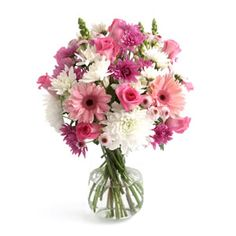 Flower Bouquet of Mixed Daisies and Gerbera Daisy