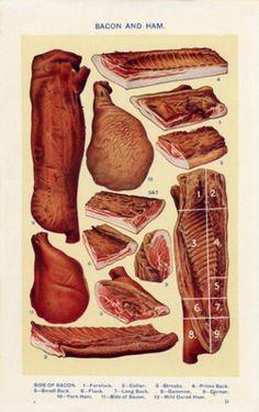 Vintage Bacon