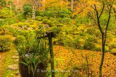 https://flic.kr/p/Djd8Cx | Discovering Rural Ōhara in Kyoto: Sanzen-in. | Tsukubai (water basin - 蹲踞) in the Shuheki-en Garden (聚碧園) of Sanzen-in in Rural Ōhara,Kyoto. The pond is covered with autumn coloured leaves.