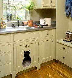 kucing dan kabinet