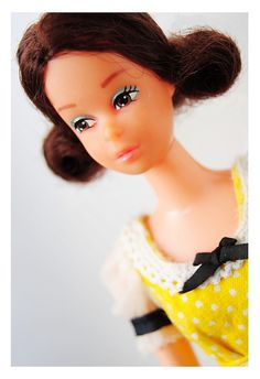 Quick Curl Francie 1973 | Flickr - Photo Sharing! Celebrity Barbie Dolls, Twisted Bangs, Quick Curls, Barbie Family, Mod Girl, Eye Painting, Cute Faces, Brunette Hair, Body Size