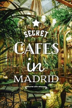 The best secret cafes in Madrid, Spain. : The best secret cafes in Madrid, Spain. Cheap Things To Do, Free Things To Do, Weekend Trips, Day Trips, Cool Places To Visit, Places To Go, At Madrid, Spain Madrid, Madrid Travel