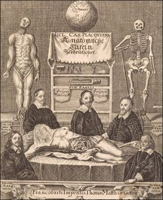 Three Dutch anatomists, wearing black clothes with white collars, pose sitting around a table which has on it a dissected cadaver. From Giulio Casserio, Anatomische Tafeln... (Frankfurt, 1656). Copperplate engraving.