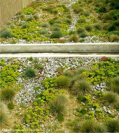 Lille parc matisse ile derborence parc matisse for Architecture du paysage