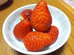 partake of vitamin C.