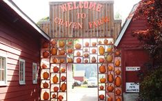 Craven Farm in Snohomish, Washington: This three-generation family farm plants roughly 30 acres of 20-30 varieties of pumpkins each year. (Once they grew an Atlantic Giant that weighed approximately 400 pounds!)