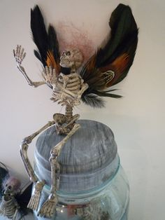 Halloween,  skeleton,  faerie,