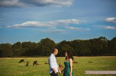 engagement photo session London Richmond Park deer