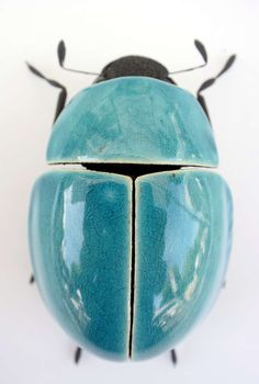Ross De Wayne / Ceramics in Berlin // Weevil / beautiful bugs made from ce . Ross De Wayne / Keramik in Berlin // Weevil / beautiful bugs made from ceramic, clay, metal / www. Cool Insects, Bugs And Insects, Ceramic Animals, Ceramic Art, Ceramic Bowls, Suncatcher, Cool Bugs, Bug Art, Insect Art
