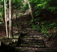 Stairs in the Buttermilk Falls gorge, Ithaca, NY, USA. Photo by Gabriela LeBaron