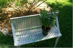 Plant Garden Bench to display potted plants made from an old bi-folding door.