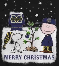 Colleges In Michigan, University Of Michigan, Michigan Go Blue, University Of Miami Hurricanes, Michigan Wolverines Football, Snoopy Comics, College Football Teams, Football Pictures, Snoopy And Woodstock