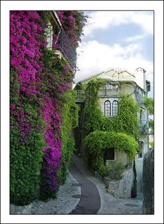 #travel Saint Paul de Vence,  France....  beautiful!!!  Could sit on this rooftop terrace with a glass of red wine and never leave!!!