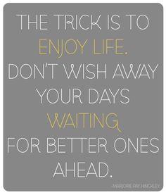 My motto this year!