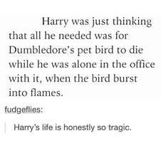 Harry Potter - Harry, Dumbledore and Fawkes