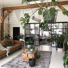 House plants decoration ideas - sunroom with dining furniture and houseplants - decorating ideas for Dining Furniture, Garden Furniture, Deco Nature, Rustic Apartment, Plant Decor, The Doors, Houseplants, My Dream Home, Decorating Your Home