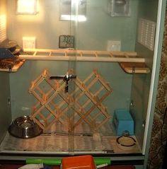 Wine Rack Snake Gym - PetDIYs.com