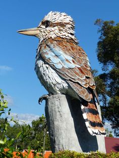 Big Kookaburra, Kurri Kurri, New South Wales. Visit Australia, South Australia, Western Australia, Australia Travel, Terra Australis, Australian Animals, Roadside Attractions, Mundo Animal, Tasmania