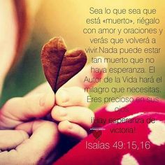 Confío en ti Señor