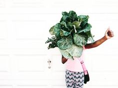 This girl. Always inquisitive. Always sweet with a good bit of sour.   I pulled the collards today they've been growing all winter long and gave them out to a few neighbors stems and all. They were excited and Onna helped deliver them. She gives collard greens a . #hazelwoodpgh #hazelwoodgrown