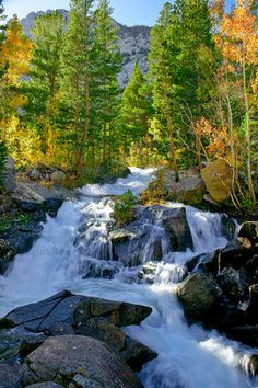 Autumn in South Fork Bishop Creek ~ Eastern Sierra Nevada Mountains, California