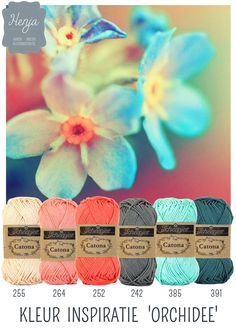 Kleurinspiratie Orchidee / Scheepjes Catona