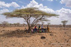Class under Acacia tree shade, Olturot, Marsabit, Northern Kenya.