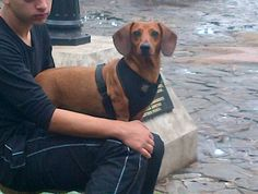 Bruno! Nice posture ;)