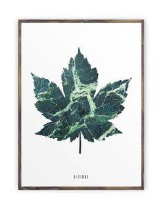 Marble Leaf