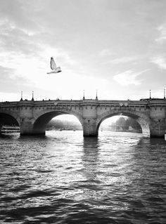 ♔ The Seine ~ Paris