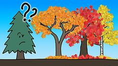 An Informative Animation That Vividly Explains the Real Reason Why Leaves Change Color in the Fall