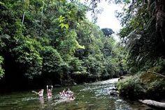 Parque Nacional Cajas, visitado por sus hermosas lagunas y cristalinas aguas de sus ríos