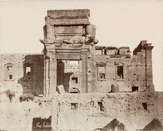 The Architectural Splendor of Palmyra