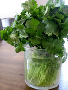 Saving Cilantro (in water in fridge with plastic bag to cover)