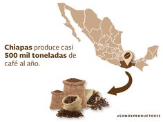 Chiapas produce casi 500 mil toneladas de café al año. SAGARPA SAGARPAMX #SOMOSPRODUCTORES