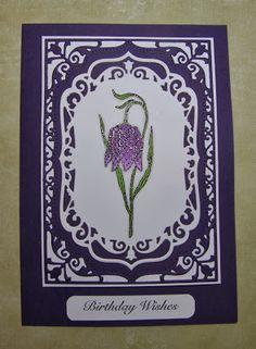 Chocolate Baroque Design Team: Delightful Flower (by Debbie) Baroque Design, Baroque Art, Birthday Wishes, Birthday Cards, Die Cut Cards, Blooming Flowers, Beautiful Flowers, Paper Crafts, Stamp