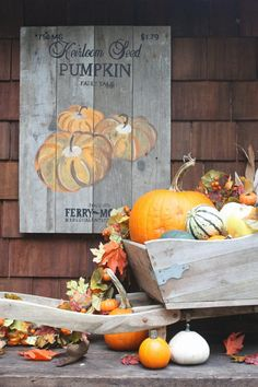 My Sweet Savannah: ~diy seed packet pallet painted pumpkin wood sign~ This would be cute for the side of the shed Wood Pallet Signs, Pallet Art, Wood Pallets, Wood Signs, Diy Pallet, Outdoor Pallet, Outdoor Sheds, Rustic Signs, Thanksgiving Decorations