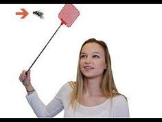 remedios caseros para eliminar las moscas en casa - YouTube