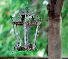 oud lantaarntje zonder glas is een prima vogelvoederbakje.