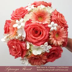 Coral roses and peach gerbera daisy bouquets are accented by ivory roses and stephanotis and ivory mini calla lilies respectively. Simple and stunning these ...