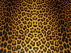 Leather Industry, Hidden Pictures, Leopard Pattern, Rind, Picture Sizes, Cowhide Leather, Cheetah, Animal Print Rug, I Shop