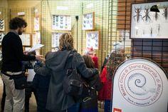 La visita degli alunni della scuola primaria Natali al Museo di Storia Naturale di Macerata