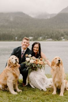 These two adorable golden retrievers pose with the newlyweds for a rainy wedding day pictures!