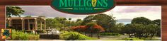 Mulligans on the Blue - Irish Restaurant and Bar Possible post wedding breakfast place--great view, good food and good prices