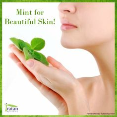 Mint is great for giving your skin a refreshed feeling because it contains menthol, which is a naturally soothing and cooling chemical. You can juice some mint leaves and apply it on your face overnight. This reduces pimples and acne. You can also prepare a face pack out of mint leaf paste and lemon juice. Apply and leave till dry and wash off to reveal beautiful skin!