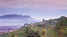 APPUNTAMENTI - Città europee del vino | Conegliano - Valdobbiadene Cross Country, Places Ive Been, Mountains, Nature, Travel, Cross Country Running, Naturaleza, Viajes, Destinations
