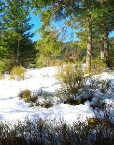 Vallée du CHAJOUX 3 - LES VOSGES - BEAUTE ET PAYSAGES DE NOTRE BELLE FRANCE