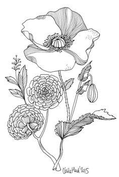 [공유] [컬러링 도안] 봄을 위한 꽃 컬러링 도안 : 네이버 블로그
