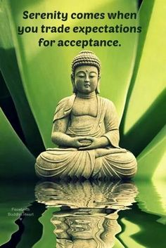 Serenity comes when you trade expectations for acceptance ~ Buddha